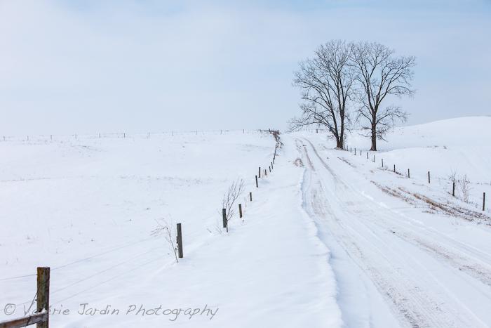 winter drive-2