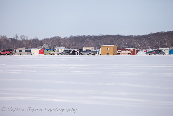 Ice fishing communities form on most Minnesota lakes every winter.