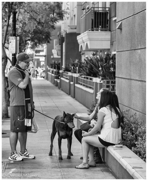 girls patting dog (1 of 1)