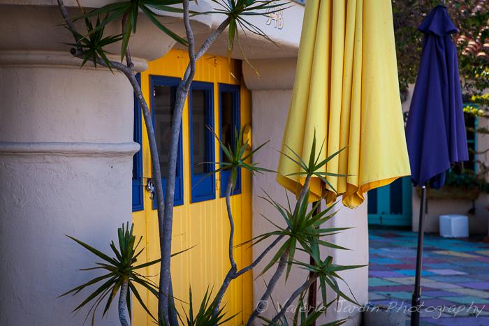 Valerie Jardin - California colors-1