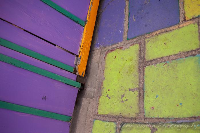 Valerie Jardin - California colors-28