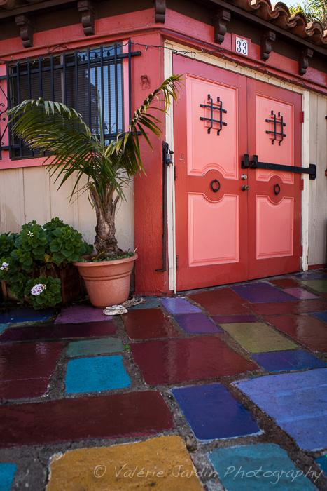 Valerie Jardin - California colors-3