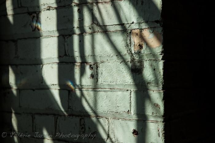 Valerie Jardin Photography - Antiques-11