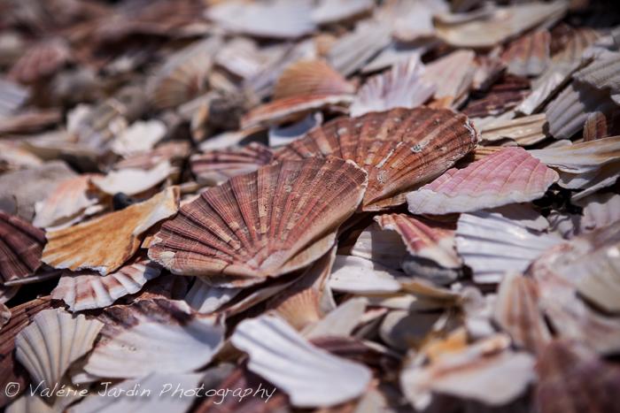Valerie Jardin Photography - Normandie en couleur-9