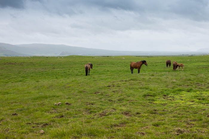 valerie jardin photography - Iceland Landscape-8