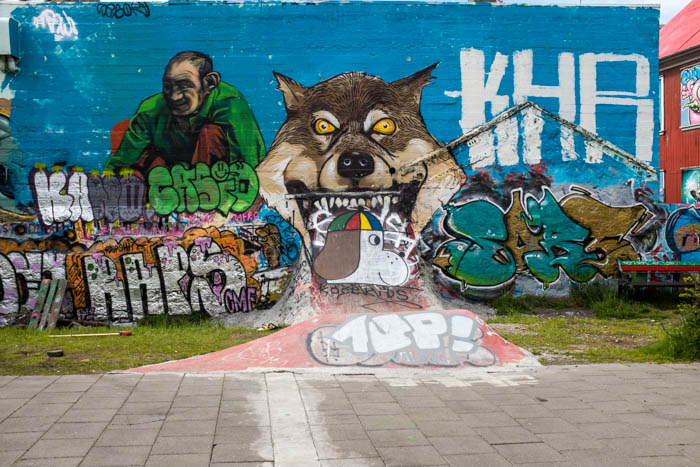 valerie jardin photography - skate park-4
