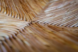 Week 7 ~ Morning light on straw chair ©Valérie Jardin