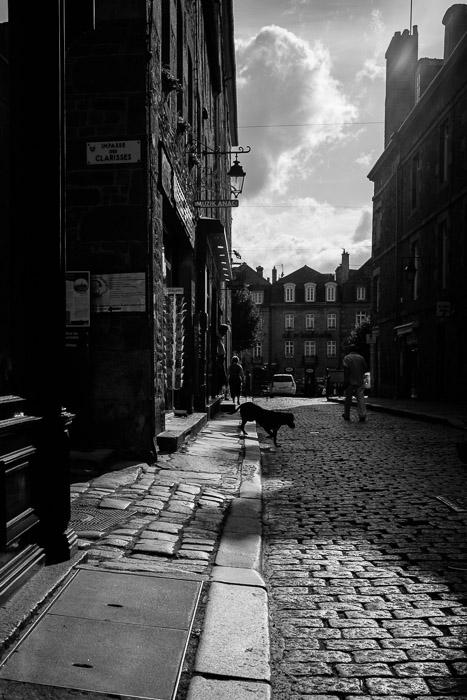 Dog crossing ~ Dinan, Brittany ©Valérie Jardin