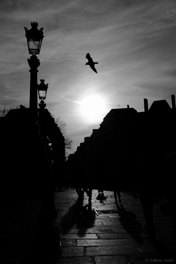 ©Valerie Jardin - Paris Life -19