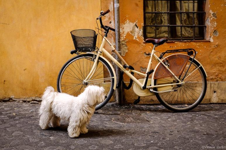 ©Valerie Jardin - Rome-13