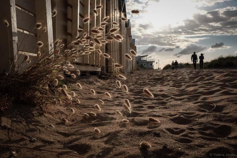 ©Valerie Jardin - Beach-1