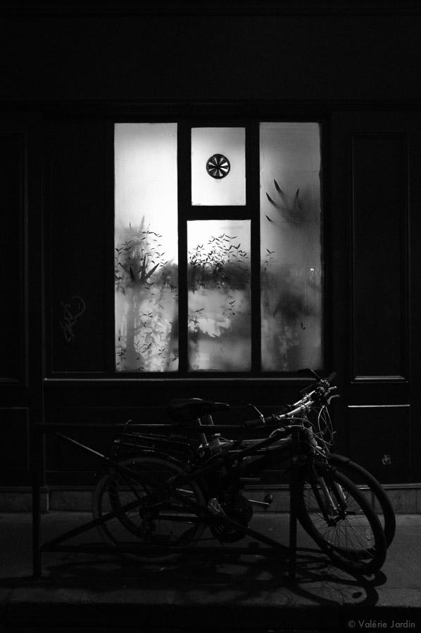 ©Valérie Jardin ~ Paris 2017-14