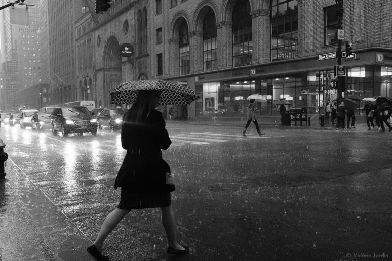 ©Valérie Jardin - NYC May 2017-3