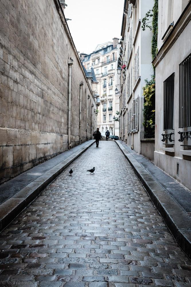 ©Valérie Jardin - Paris colors-10