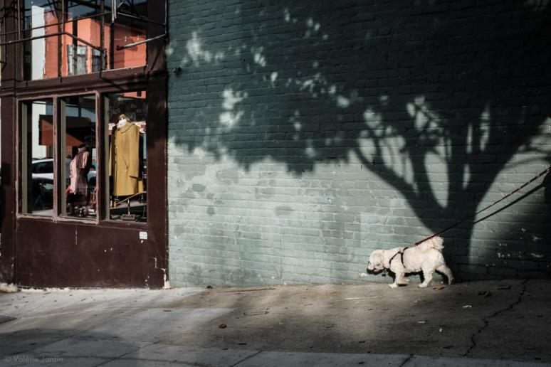 ©Valerie Jardin ~ SF-8