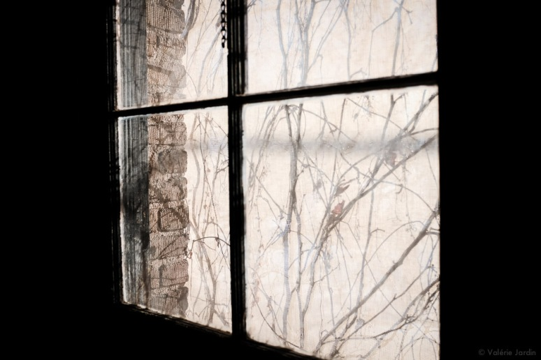 ©Valerie Jardin - Mpls Winter Light-2