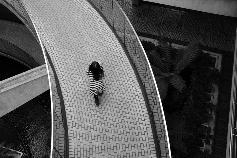 ©Valerie Jardin - SF-11