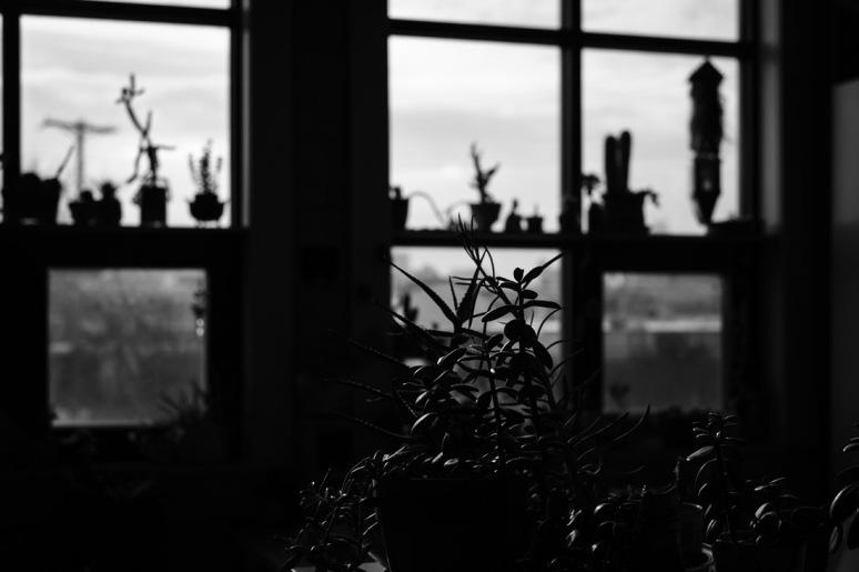 ©Valerie Jardin -emily-5