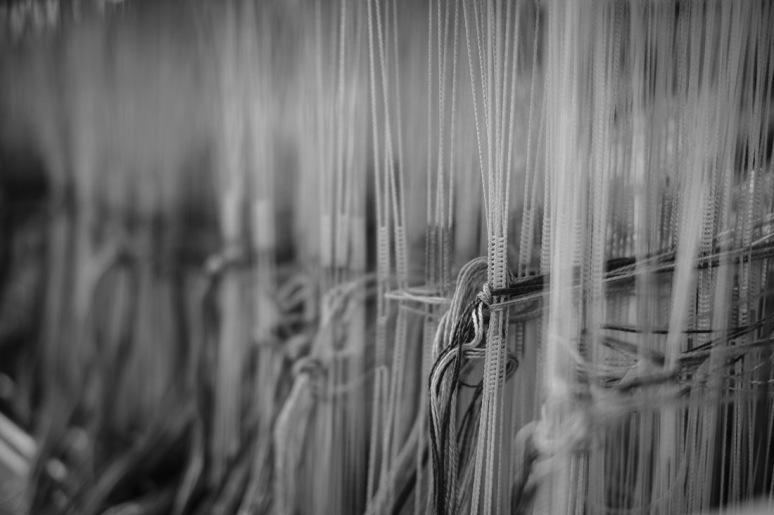 ©Valerie Jardin - Kelly-4
