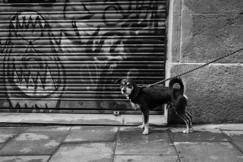 ©Valérie Jardin - Barcelona-1