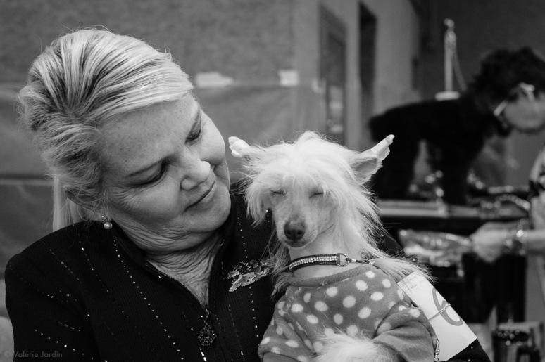 Copyright Valérie Jardin - Dog show-28